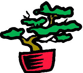 bonsai-image-animee-0004