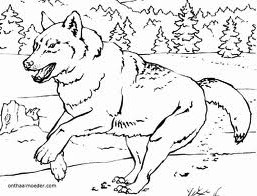 coloriage-loup-image-animee-0003